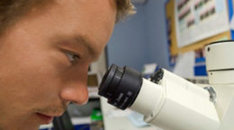 Que son las Células madre?