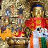 medicina-tibetana-peybur
