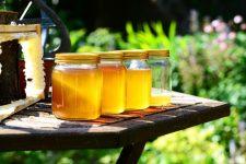 14 remedios caseros con miel