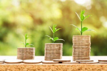 Estas buscando un emprendimiento rentable y de bajo costo?